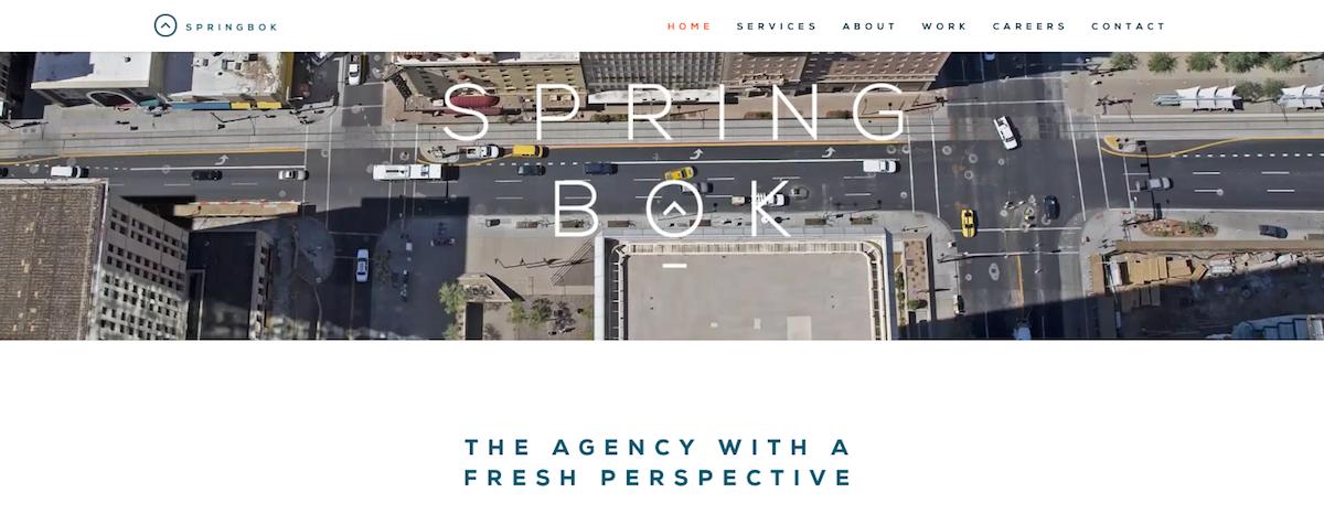 springbok digital agency